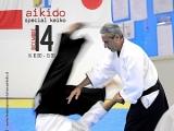 Aikido Special Keiko